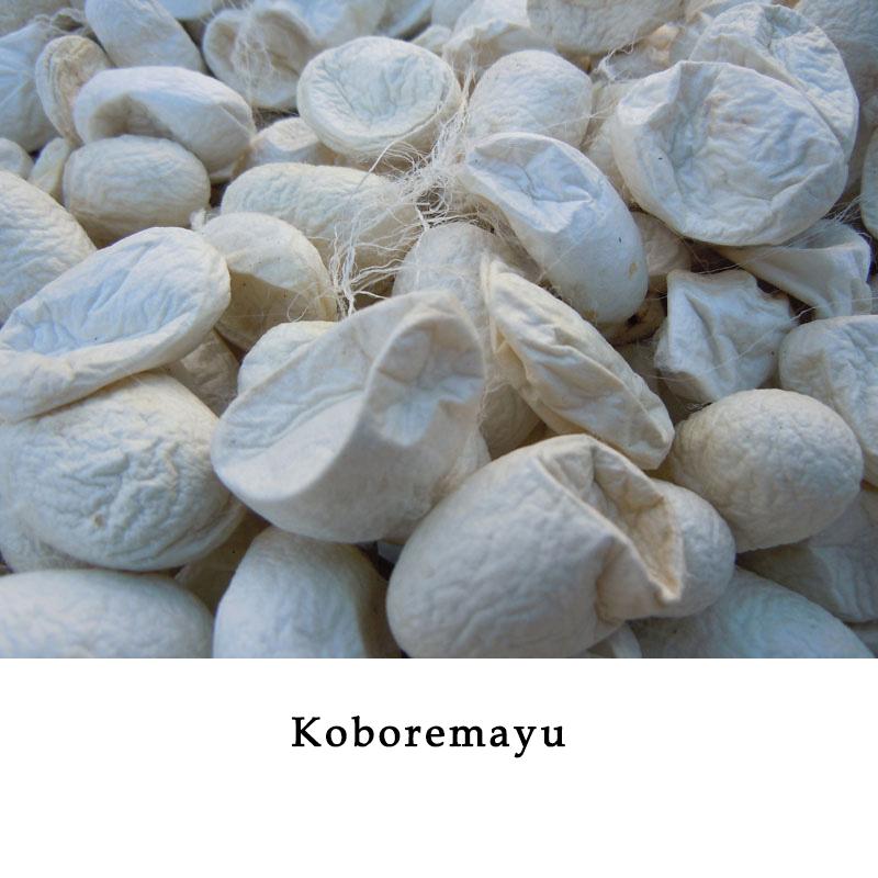 Koboremayu